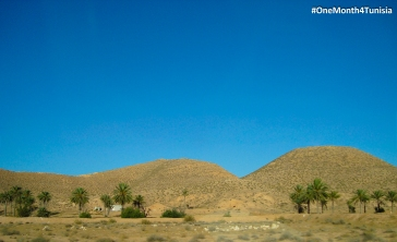 #Post11 #OneMonth4Tunisia يا فاتحه حضـــنك بلاش ميـــــول، يا فاديه أولادك فـــداك العـمـــــر The beauty of the desert, the magic of the South <3 Place: Kebili | Achraf Aouadi ©